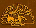 alligator records logo